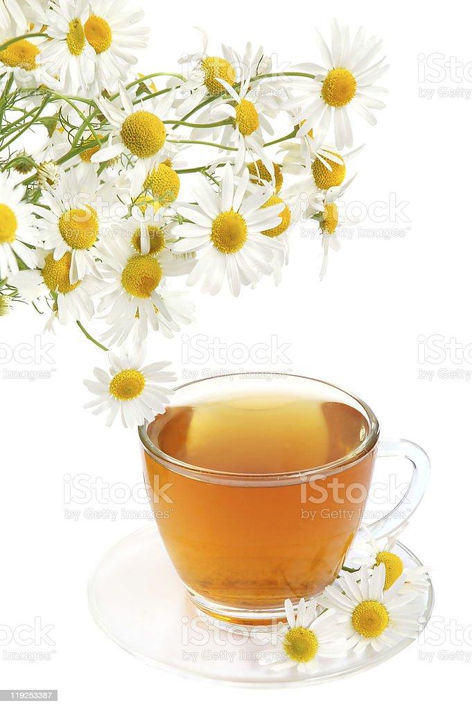 Herbal camomile tea stock photo