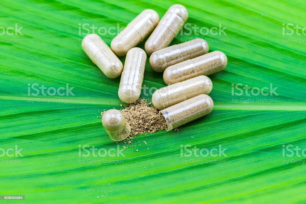 Herbal capsule and powder on green leaf  background. stock photo