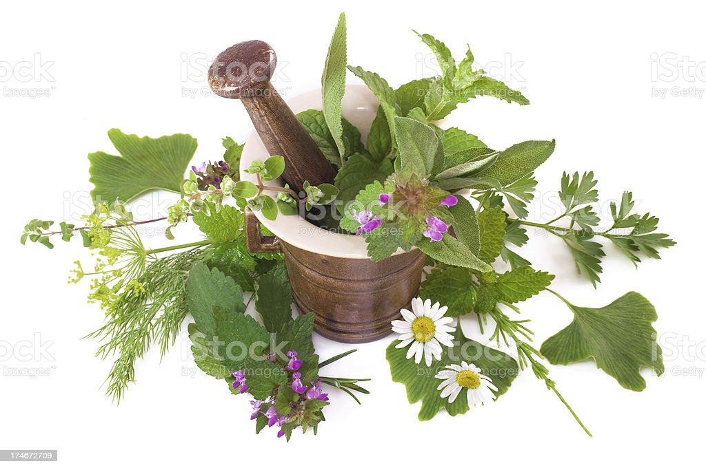 Herbal composition royalty-free stock photo