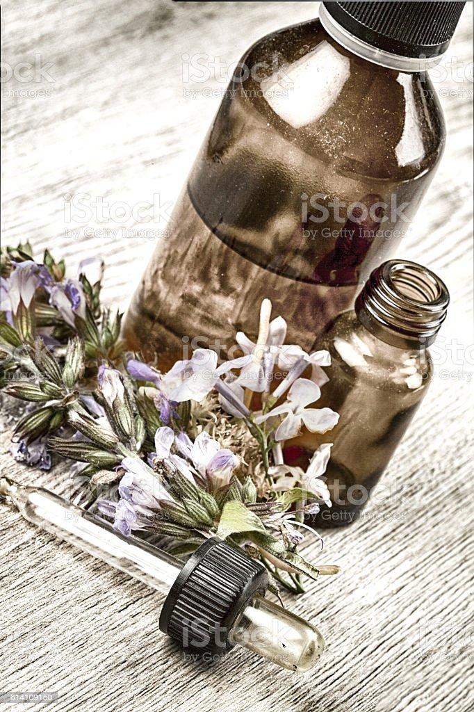 Herbal essence. Alternative healthy medicine. stock photo