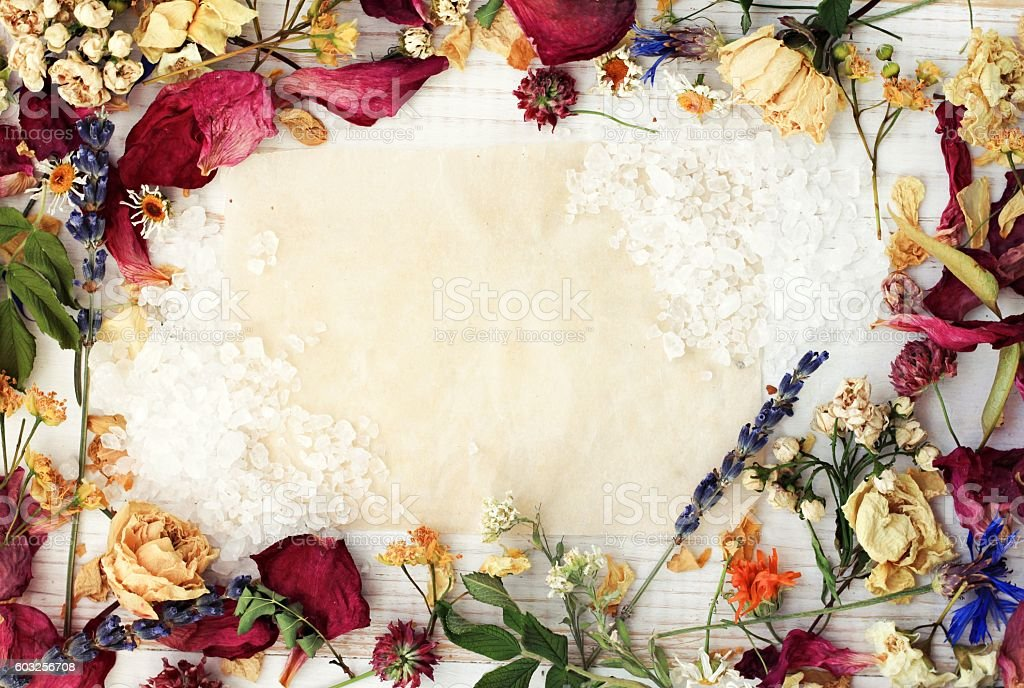 Herbal framed recipe background, empty paper center. stock photo