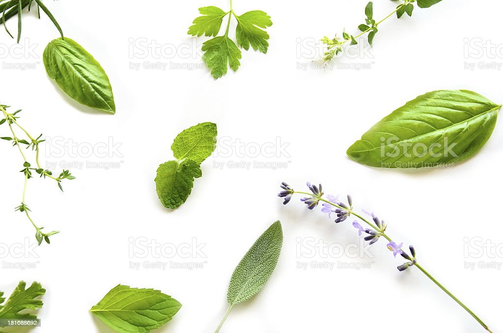 herbal leaves on white background royalty-free stock photo