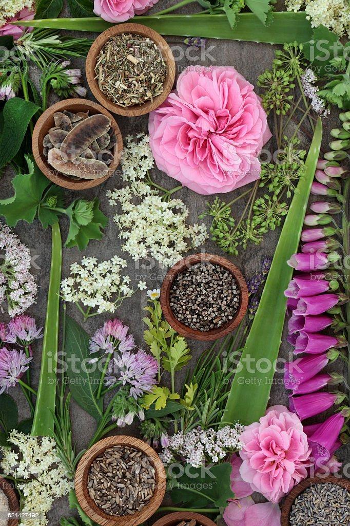 Herbal Medicine Selection stock photo