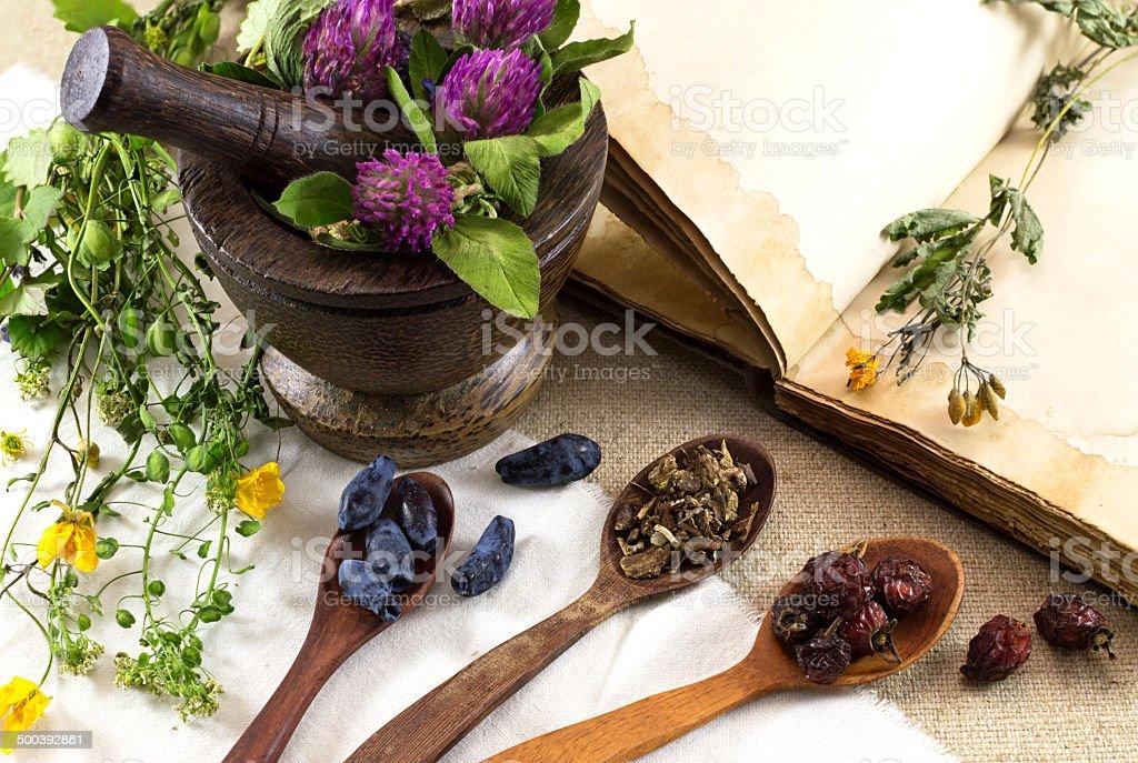Herbal medicine still life 3 stock photo