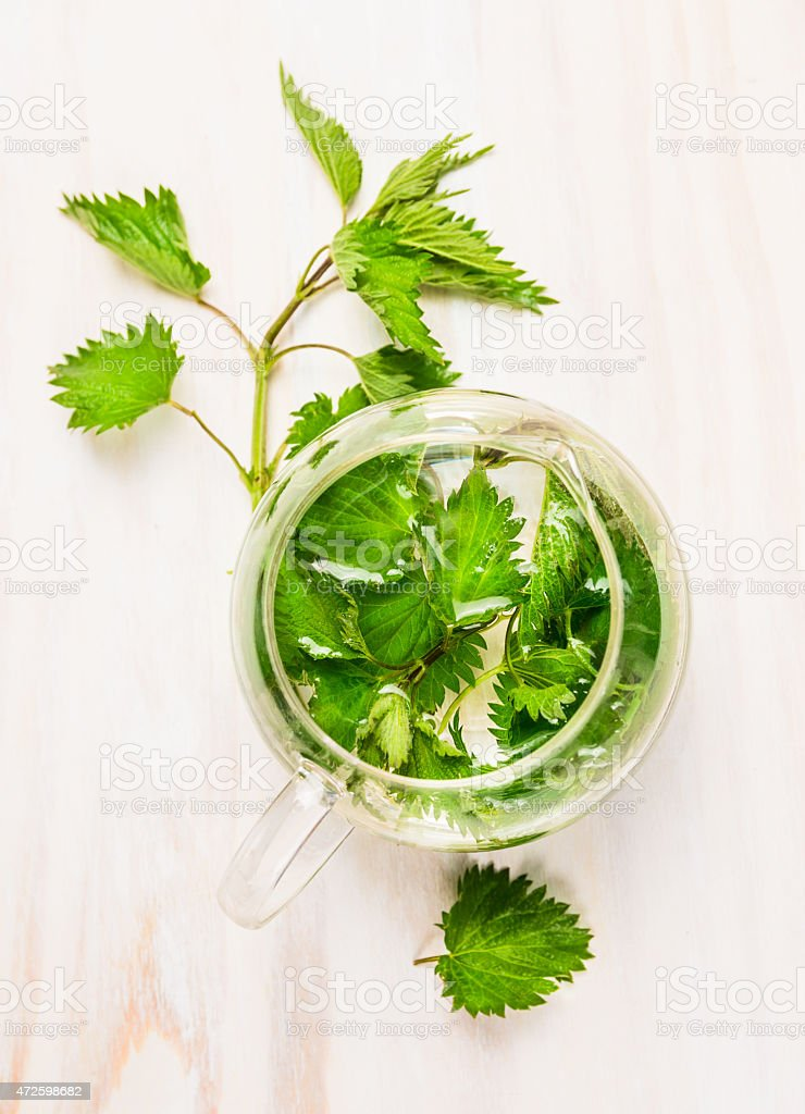 Herbal nettle tea in a glass pot, top view stock photo