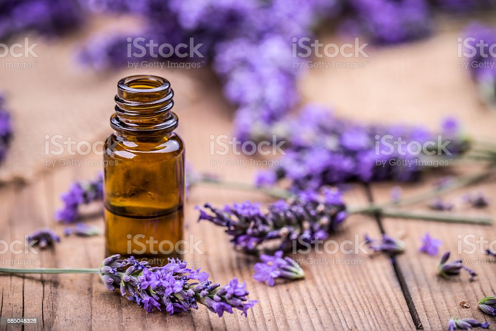 Herbal oil and lavender flowers stock photo