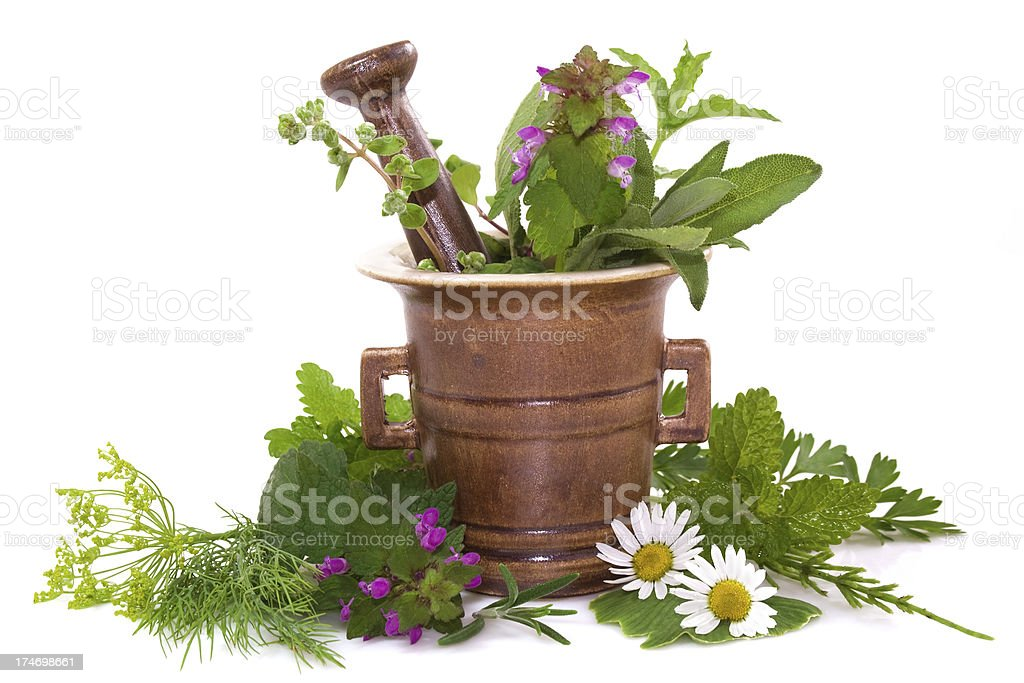 Herbal royalty-free stock photo