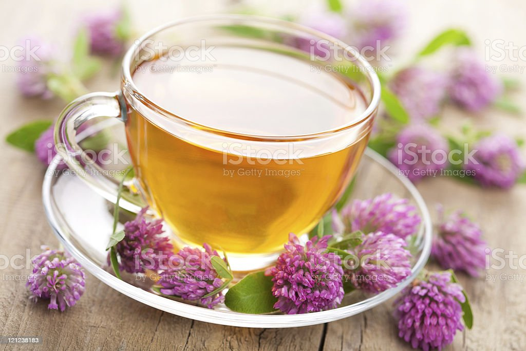 herbal tea and clover flowers royalty-free stock photo