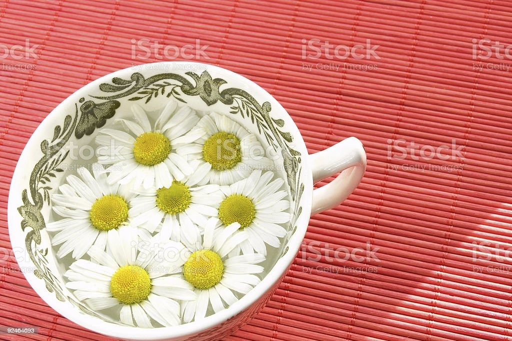 herbal tea - camomile royalty-free stock photo