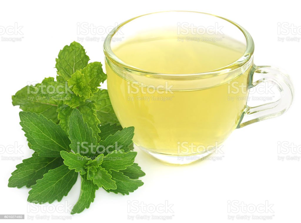 Herbal tea in a cup with stevia and mint leaves stock photo