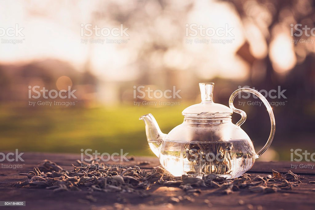 Herbal tea made from sage in glass teapot stock photo