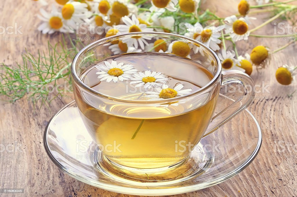 Herbal tea with chamomile flowers stock photo