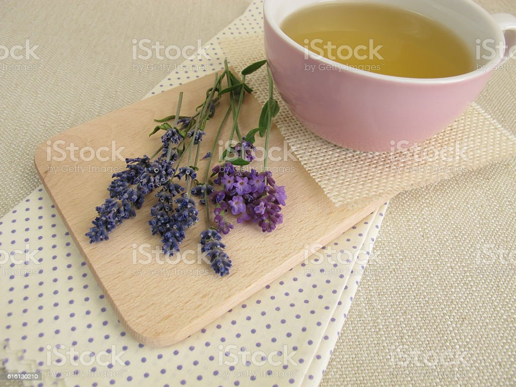 Herbal tea with lavender stock photo