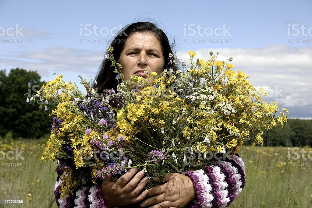 Herbalist royalty-free stock photo