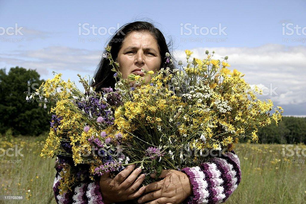 Herbalist stock photo