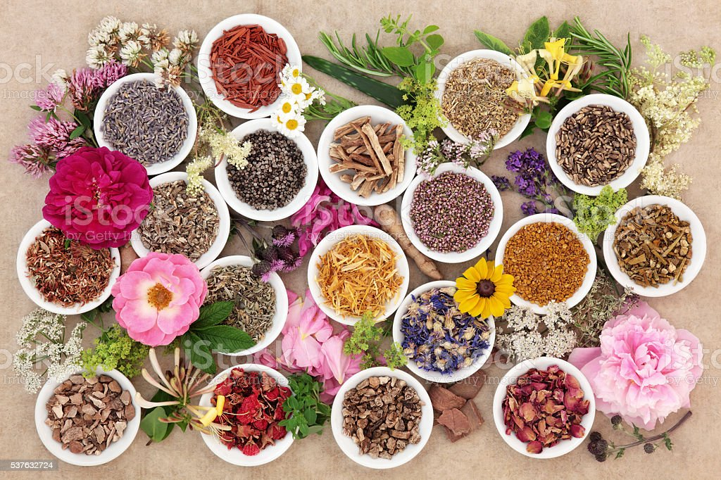 Herbs and Flowers for Healing stock photo