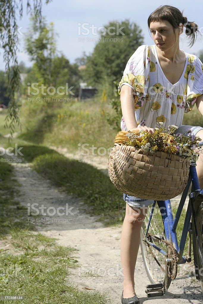 Herbs harvest royalty-free stock photo