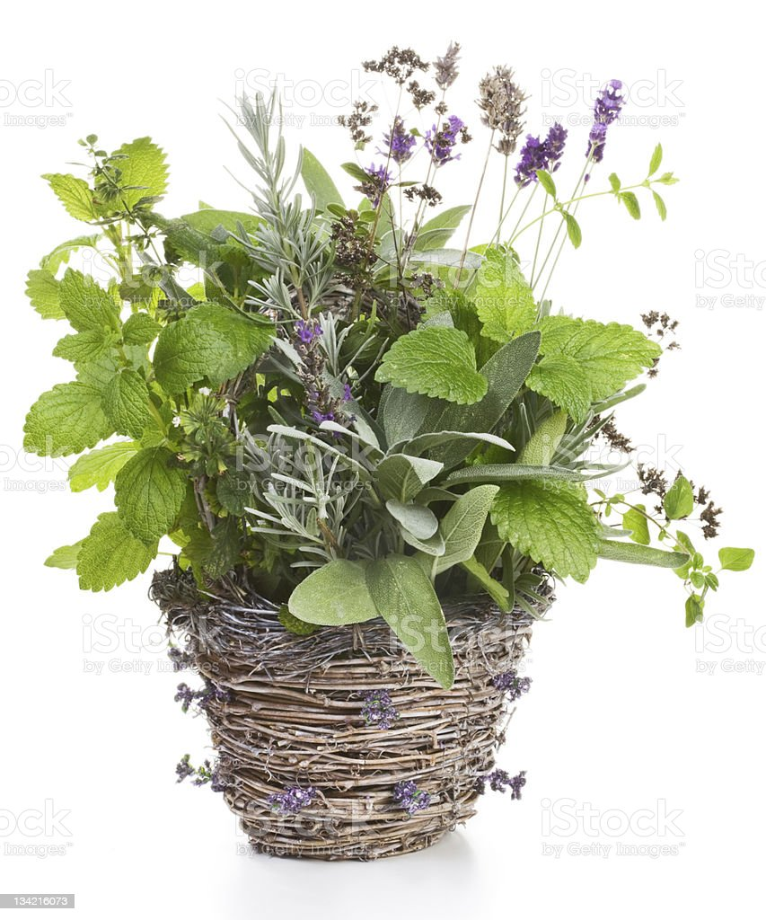 Herbs in a Basket royalty-free stock photo