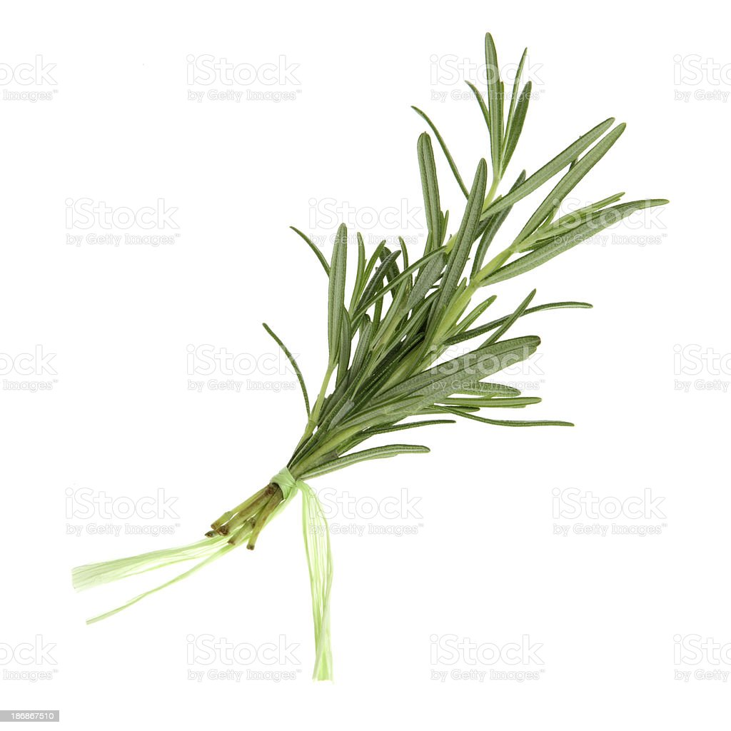Herbs, Isolated - Rosemary stock photo