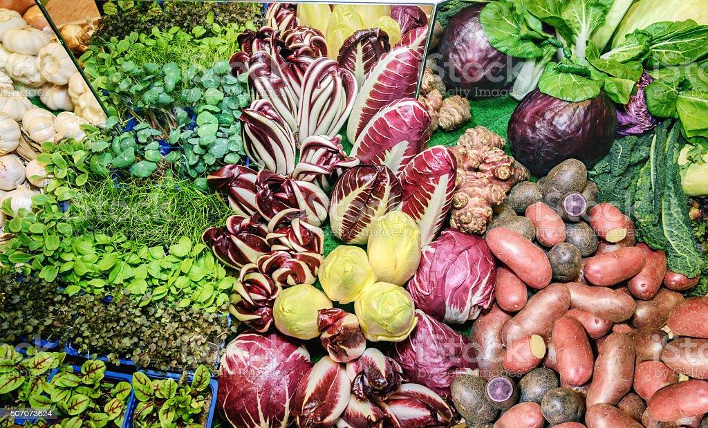 Herbs, mangold, garlic, cabbage, potatoes, chicory, radicchio, kale, french endive stock photo