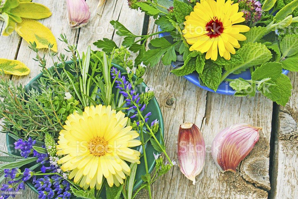 Des herbes, des extraits de plantes médicinales et de l'ail photo libre de droits