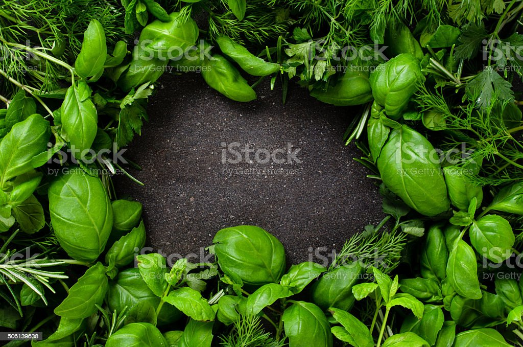 Herbs on dark background stock photo