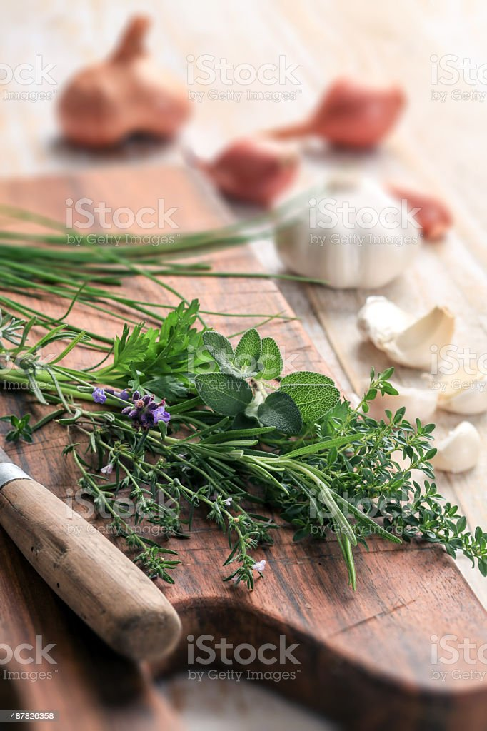 Herbs, Onion and Garlic stock photo