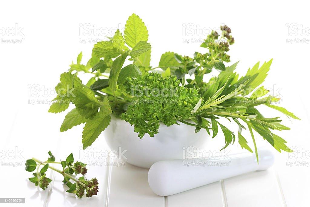 Herbs royalty-free stock photo