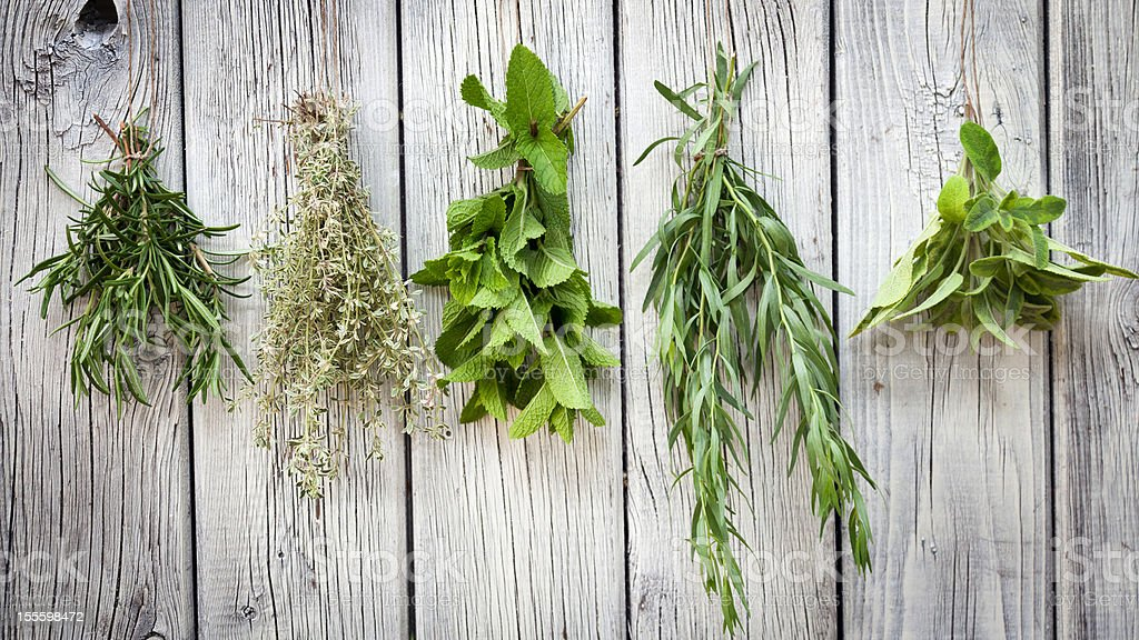 Herbs stock photo