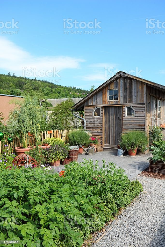 Herbs, vegetables and flower garden stock photo