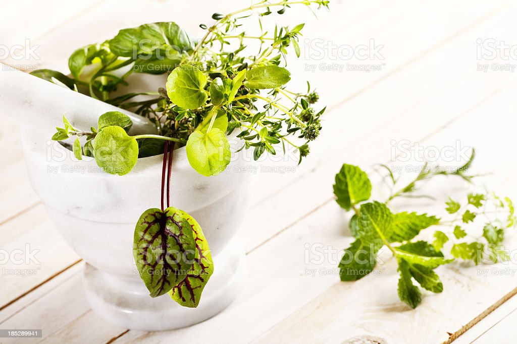 herbs with mortal and pestle royalty-free stock photo
