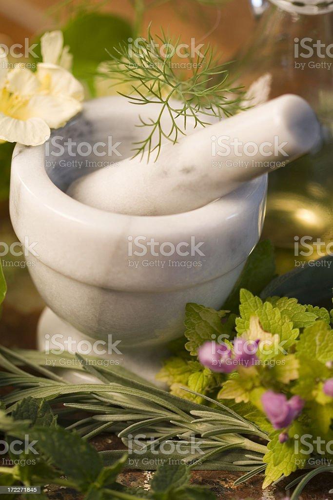 Herbs-4 royalty-free stock photo