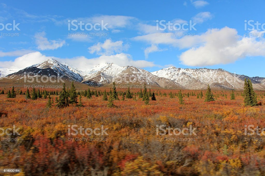 Herbstlandschaft-Alaska stock photo