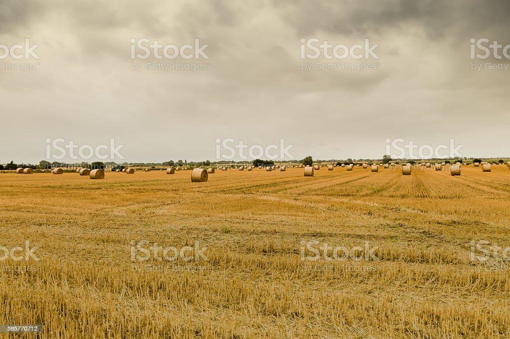Herbstliches Stoppelfeld stock photo