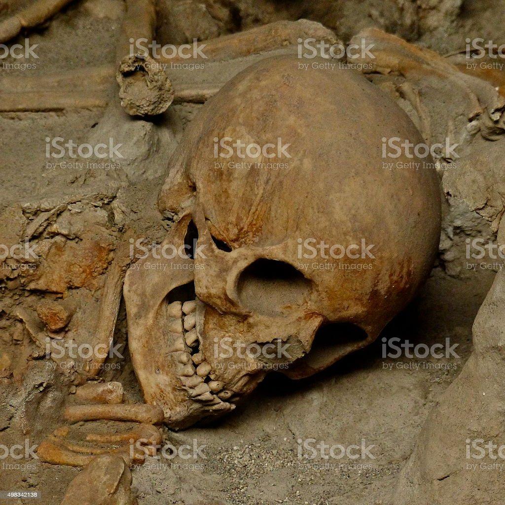 Herculanum, crâne, ossements, mort stock photo