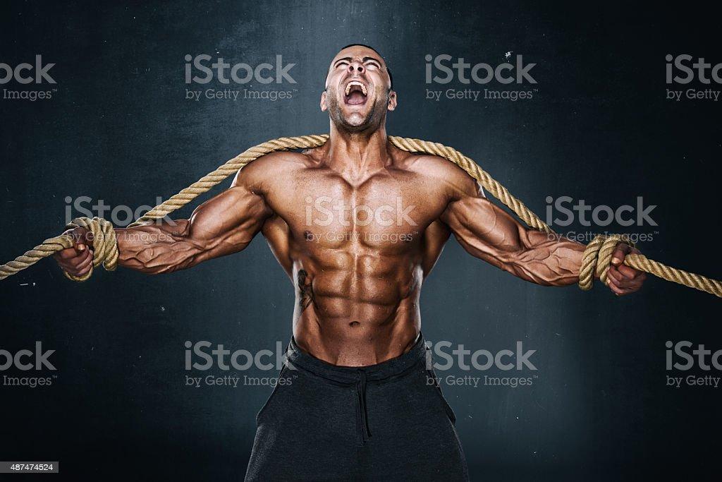 Hercules stock photo