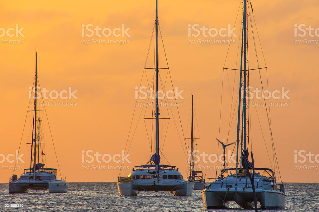 Herd of catamarans stock photo