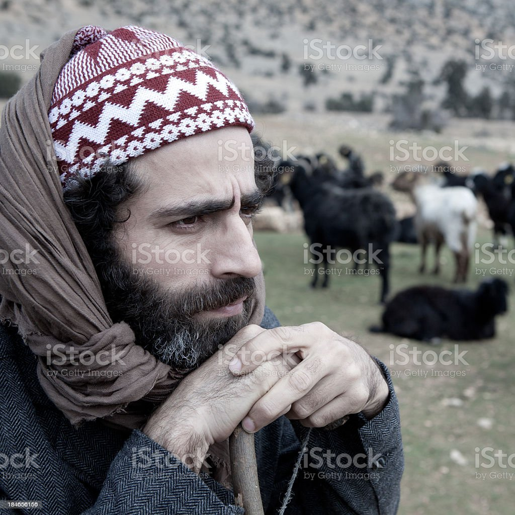 Herdsman watching his flock of sheep stock photo
