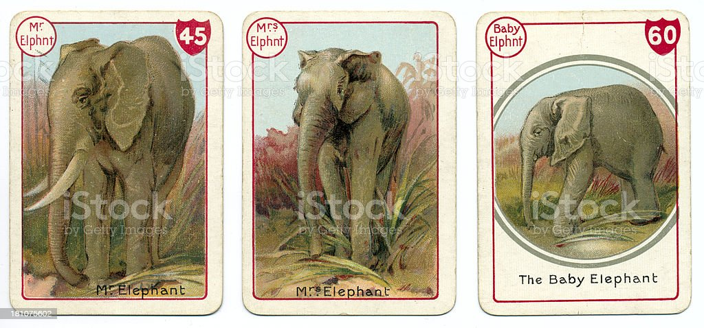 Three elephant playing cards Victorian animal families game vector art illustration