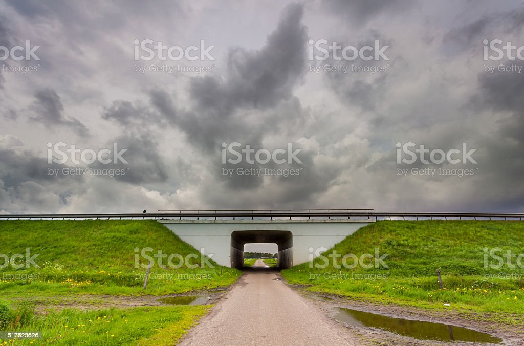 Here comes trouble stock photo