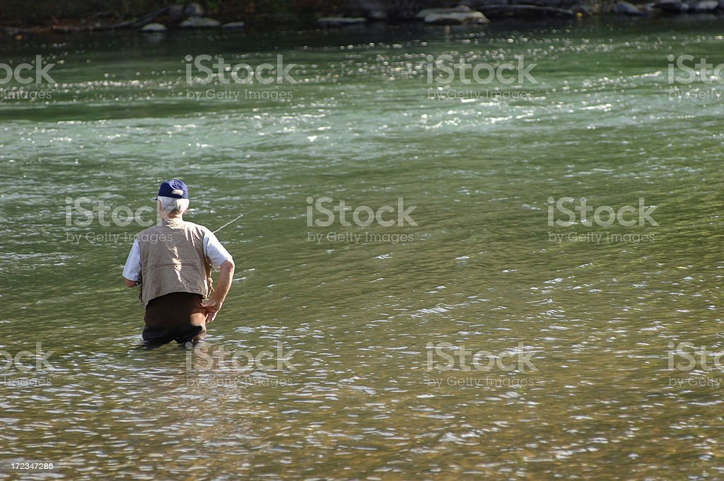 'Here, Fishy' royalty-free stock photo