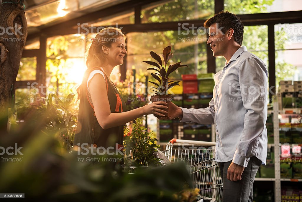 Here is your potted plant sir! stock photo