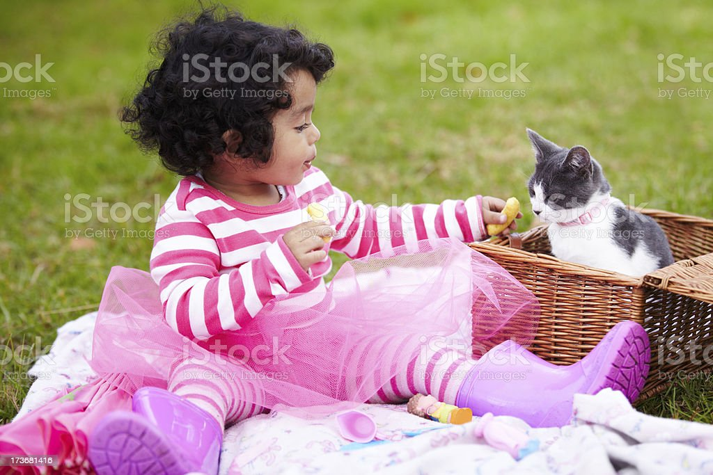 Here you go.... royalty-free stock photo