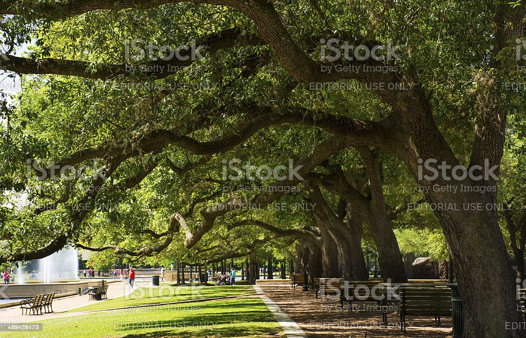 Hermann Park stock photo
