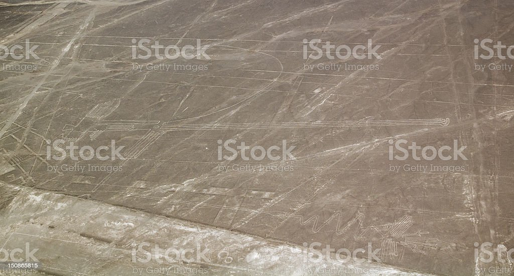 Heron Bird and other Nazca Lines royalty-free stock photo