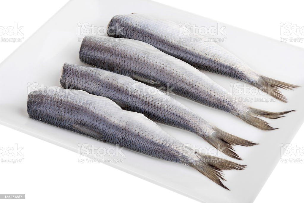 Herring on a plate royalty-free stock photo