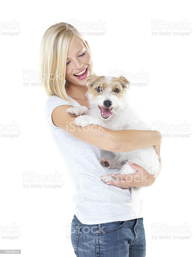 He's any girl's dream dog stock photo
