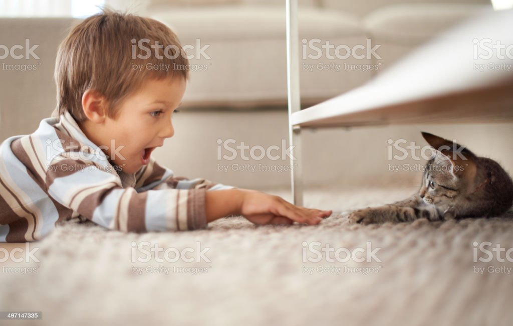 He's even littler than me! stock photo