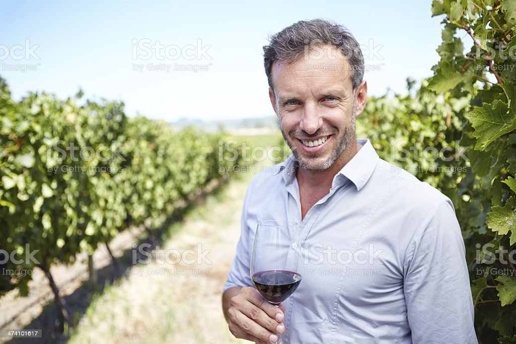 He's got years of wine-making experience royalty-free stock photo