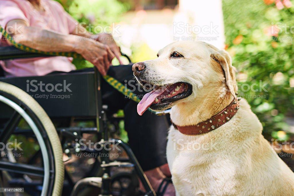 He's on duty stock photo
